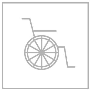 Icons_Behinderung_big